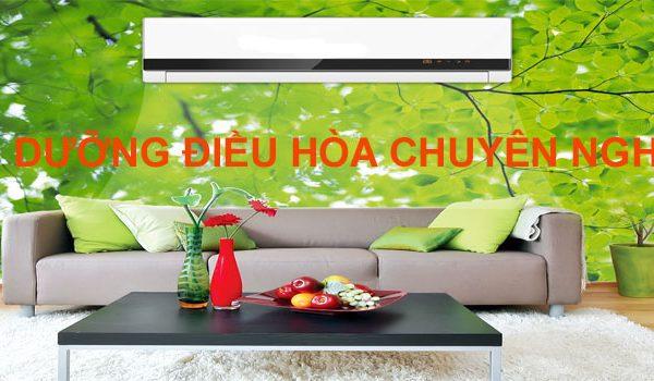 bao-duong-may-lanh-uy-tin-gia-re-tai-da-nang-447